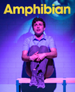 Amphibian, Friday 11 June